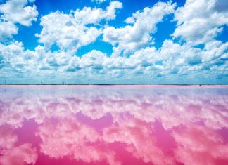 Фото озера ретба синегал